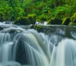 Golitha-Falls2